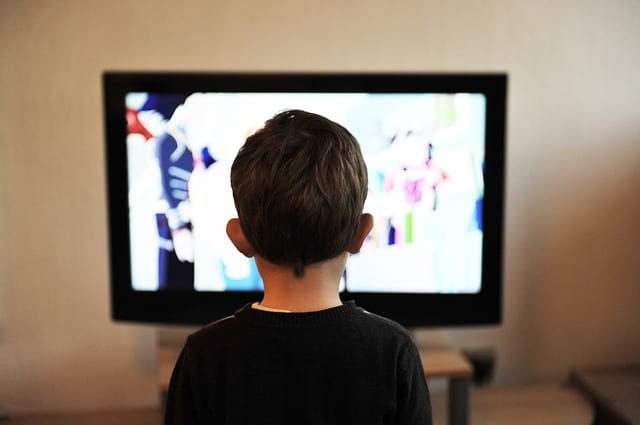 educational shows and programs can help stop summer learning loss